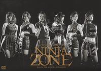 『NINJAZONE/RIZE OF THE KUNOICHI WARRIOR』 - 【徒然なるままに・・・】