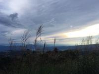 すすきと白駒池と御射鹿池 - うつわ愛好家 ふみの のブログ