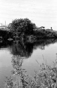 9月の河畔 - そぞろ歩きの記憶