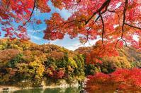 戸川みゆきさん2019紅葉おススメスポット「秩父・長瀞」@埼玉県 - 今年は紅葉を観に行こう♪戸川みゆきの秋の散策ブログ