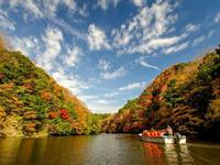 戸川みゆきさん2019紅葉おススメスポット「亀山湖」@千葉県 - 今年は紅葉を観に行こう♪戸川みゆきの秋の散策ブログ