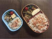 ナスと鶏肉のオイスター炒め - 庶民のショボい弁当