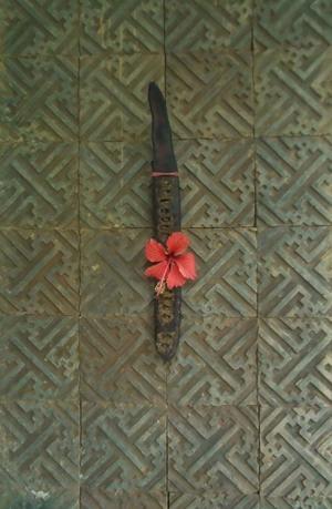 南国1 - 一茎草花