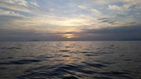 賑やかな夜の海 - For You