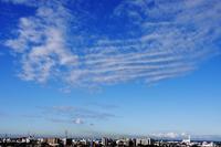 波状雲(巻積雲) - 日々の風景