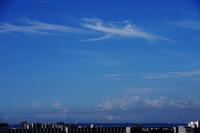 鈎状雲(巻雲) - 日々の風景