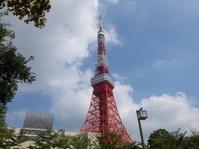 今日は東京タワーが大きく見えます - 植村写真スタヂオblog