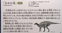 『恐竜博2019』見学(4)…新属新種 Kamuysaurus japonicus (1) - ふぉっしるもしてみむとてするなり
