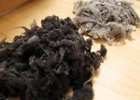 久しぶりの羊毛 - ひつじの手仕事、日々のこと