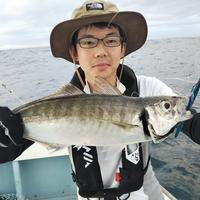 【大鱗】夏休み釣果ダイジェスト③ - まんぼう&大鱗 釣果ブログ