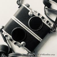 symmetry - 心のカメラ   more tomorrow than today ...