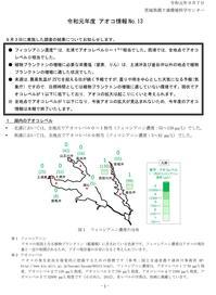 【アオコ情報№13】 - ぴゅあちゃんの部屋