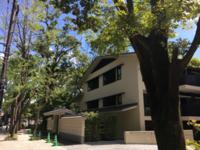真夏日に散々歩く - 京都西陣 小さな暮らし