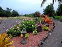 むかーしむかし   ホルアロアで・・2009.6 - Hawaiian LomiLomi サロン  華(レフア)邸