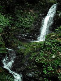 22℃、小雨で一部に青空も朽木小川・・・・・・滝気象台より - 朽木小川・気象台より、高島市・針畑・くつきの季節便りを!