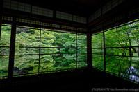 新緑の瑠璃光院 - ぴんぼけふぉとぶろぐ2