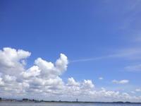 新潟県づくしの今週と成りました(笑) - Fly Fishing Total Support.TEAL