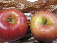 りんご - さかえのファミリー