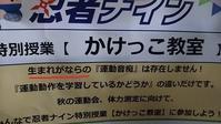 生まれが奈良 - ウンノ整体と静岡の夜