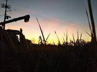 稲刈が始まりました。→なんと!日中の気温が35℃。 - 百笑通信 ブログ版