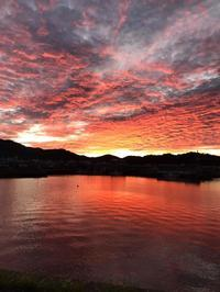 港の朝焼け - 四代目志賀社長のブログ