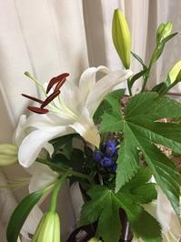 花のある暮らし - 今日もひとつだけ