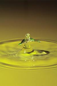 【備忘録】水滴アートに挑戦中 その19 ~グラス以外の容器を試してみる~ - Omoブログ