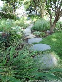 晩夏の庭しごと庭に咲いた宿根草の花 - シンプルで心地いい暮らし