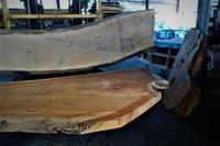 一枚板の整理、仕込み - SOLiD「無垢材セレクトカタログ」/ 材木店・製材所 新発田屋(シバタヤ)