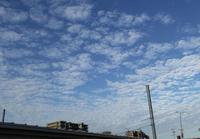 うろこ雲 - ひつじの手仕事、日々のこと