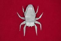 創作折り紙「クモ」 - 星檜葉(hosihiba・ホシヒバ・StarConifer)