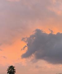 夕焼け空に雲のオオカミ - アガパンサス日記(ダイアリー)
