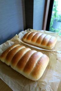 お家パン - KuriSalo 天然酵母ちいさなパン教室と日々の暮らしの事
