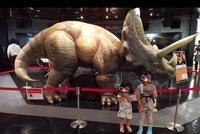 スカイツリーでのイベント「 アニマルプラネットpresents恐竜WEEK」に行った話。 - 漢那ゆきのブログ