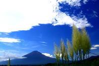 令和元年9月の富士(8)河口湖大石公園の富士 - 富士への散歩道 ~撮影記~