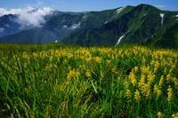 北飯豊の夏 - 人生山あり