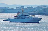 白露!、内航用練習船「大成丸」神戸入港 - みなと神戸 のんびり風物詩