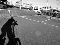 影武者走る - 『私のデジタル写真眼』