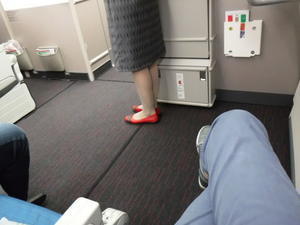 Turkish Airlines - スペース ドリーム