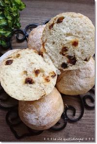 レーズン丸パン…手にくっついて汚いから粉要らん!大きいのを教えるには?? - 素敵な日々ログ+ la vie quotidienne +