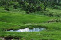 苗場山で出会った風景-5 - 自然と仲良くなれたらいいな2