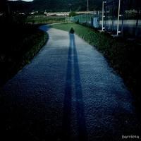 台風の後 - NA*GO*美PHOTO