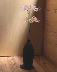 生きる力 - 自然を見つめて自分と向き合う心の花