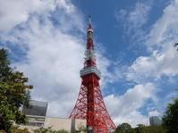 今日の東京タワーです - 植村写真スタヂオblog