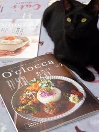 O'clocca スパイスカレー特集と、あさりの不調 - キッチンで猫と・・・