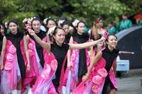 ザ・よさこい!大江戸ソーラン祭り2019【2】 - 写真の記憶