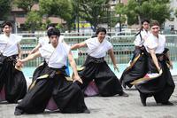 ザ・よさこい!大江戸ソーラン祭り2019【5】 - 写真の記憶