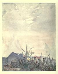 Maxwell Armfield画:The flower book① - Books