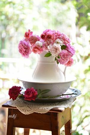 ブログ開設6周年 - バラ好き夫婦のガーデン日記