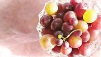 ふぞろいの葡萄。。。 - □ □ nuku-nuku □ □